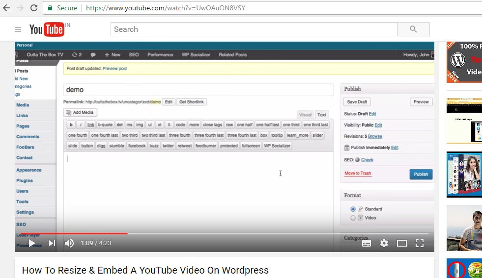 youtube video in wordpress post,resize youtube video in wordpress
