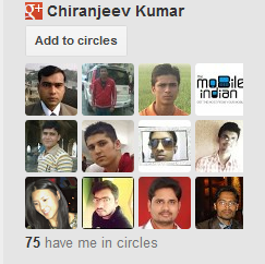 Add Google+ Follower Widget