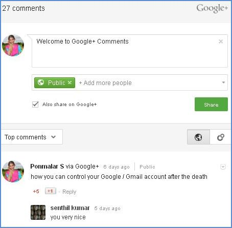 Google plus comment box